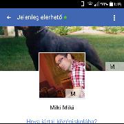miki1988, 29