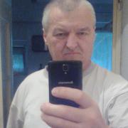 selyemret, 52